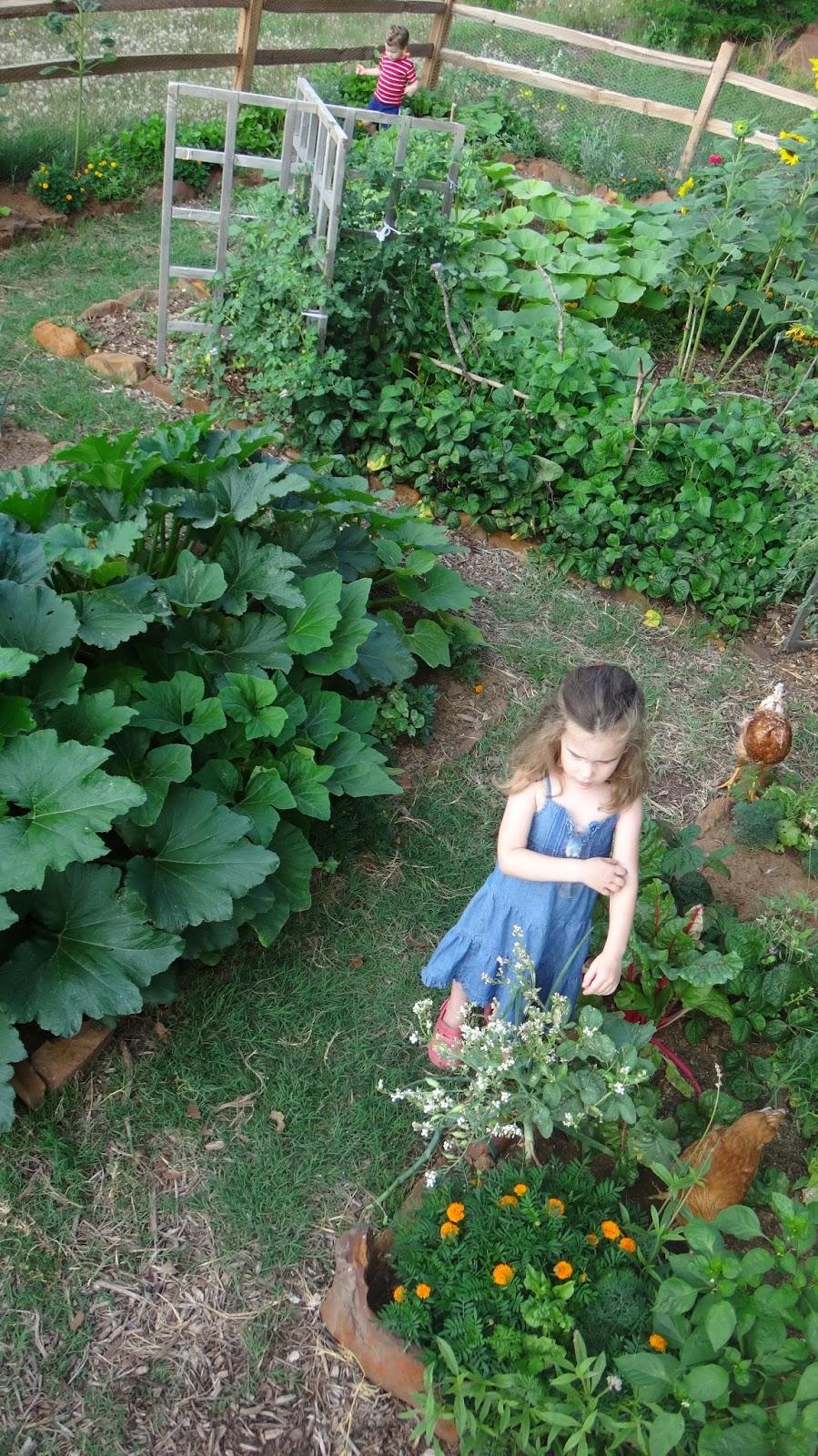 The family ware a walk through the garden june 4th - When you walk through the garden ...