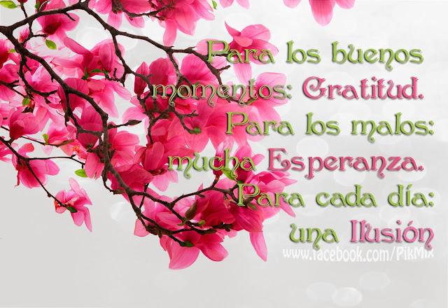 Para los buenos momentos ● Frase ● Flor de cerezo