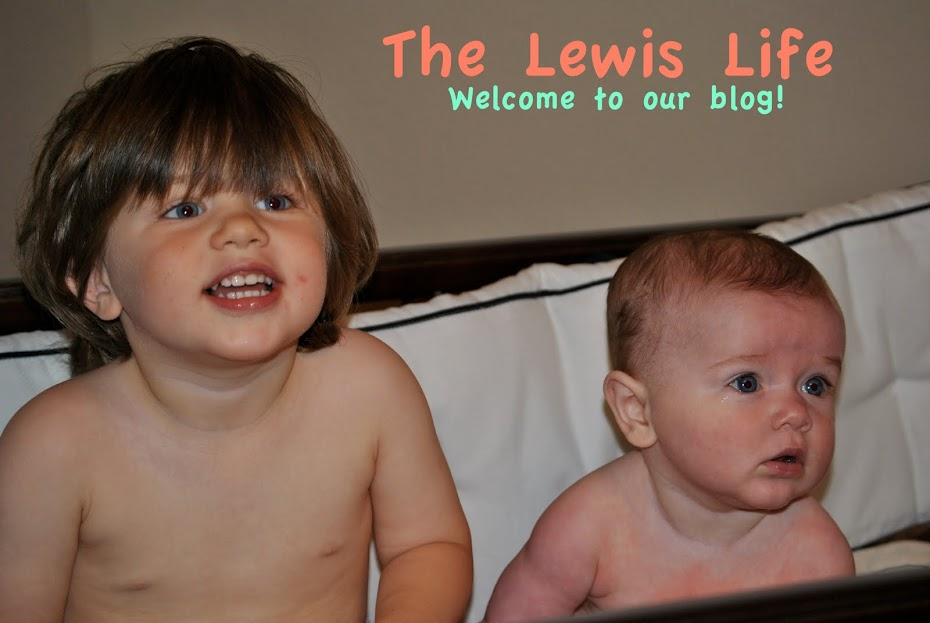 The Lewis Life