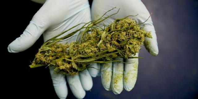 Vícios: O impacto das drogas nos círculos sociais