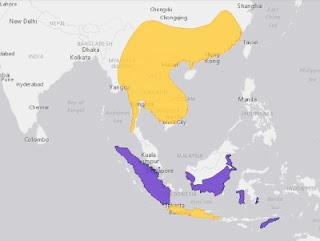 """Burung kutilang atau Pycnonotus aurigaster, bisa dibilang sebagai jenis burung cucak yang paling populer di Indonesia. Burung Kutilang masih dengan mudah dijumpai di beberapa daerah, terutama di Jawa. Dan nama burung kutilang sendiri cukup populer, terutama dengan adanya sebuah lagu anak-anak berjudul """"Kutilang"""". Nama resmi burung kutilang di Indonesia adalah Cucak Kutilang. Di Sunda burung dari famili Pycnonotidae (merbah atau cucak-cucakan) ini dikenal sebagai cangkurileung. Sedang di Jawa dinamai sebagai ketilang atau genthilang. Dalam bahasa Inggris burung kutilang ini disebut Sooty-headed Bulbul. Nama latin hewan ini adalah Pycnonotus aurigaster (Jardine & Selby 1837) dengan sekitar 9 anak jenis yang dikenal saat ini. Tubuh cucak kutilang berukuran sedang, dengan panjang tubuh sekitar 20 cm. Sisi bagian atas tubuh (punggung dan ekor) berwarna coklat kelabu, sedangkan sisi bawah (tenggorokan, leher, dada, dan perut) berwarna putih keabu-abuan. Memiliki topi, dahi, dan jambul berwarna hitam. Memiliki tunggir (bagian muka ekor) berwarna putih, serta penutup pantat berwarna kuning jingga.   Habitat burung kutilang di tempat-tempat terbuka, tepi jalan, kebun, pekarangan, semak belukar dan hutan sekunder, sampai dengan ketinggian 1.600 m dari permukaan laut. Sering pula di temukan hidup meliar di taman dan halaman-halaman rumah perkotaan. Burung Kutilang acapkali berkelompok, dengan jenisnya sendiri maupun dengan jenis merbah yang lain, atau bahkan dengan burung jenis lain  Burung Kutilang menyebar luas di Tiongkok selatan dan Asia Tenggara(Kecualai Malaysia), Jawa serta Bali. Diintroduksi ke Sumatra dan Sulawesi, beberapa tahun silam burung ini juga di temuakan di Kalimantan.     Anakjenis (subspesies) cucak kutilang yang dikenal antara lain: Pycnonotus aurigaster aurigaster (Vieillot, 1818), mendiami Jawa dan Bali. Pycnonotus aurigaster chrysorrhoides (Lafresnaye, 1845), mendiami China bagian tenggara. Pycnonotus aurigaster dolichurus Deignan, 1949, mendiami Vietna"""