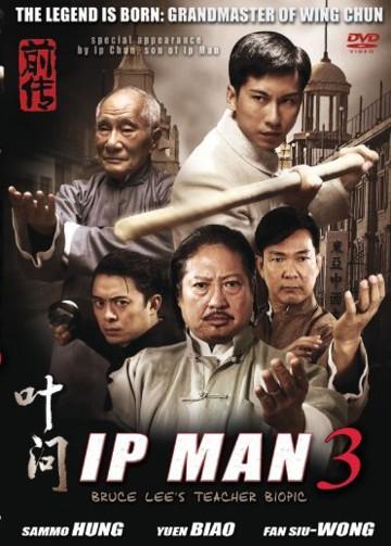 O Grande Mestre 3 Dublado (2010)