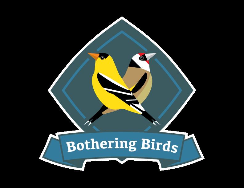 Bothering Birds