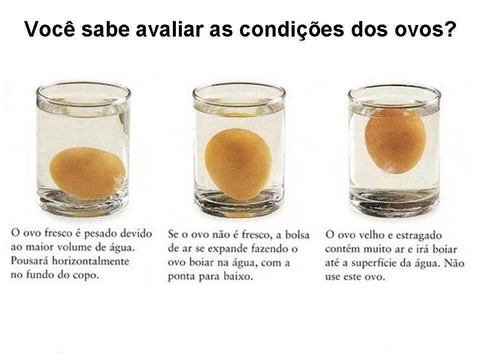 Teste básico sobre os ovos: