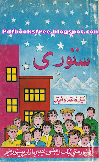 Sturi book cover