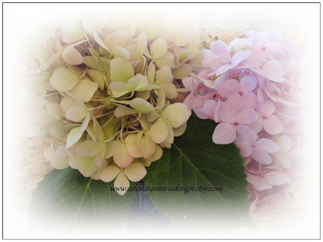 Growing Beautiful Hydrangeas