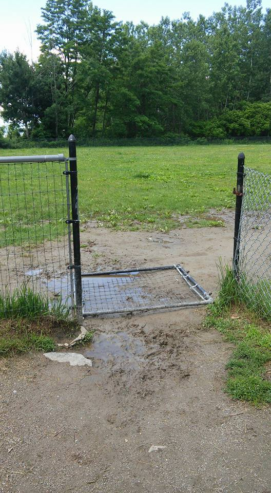 Waterfront Dog Park Needs Repairs!