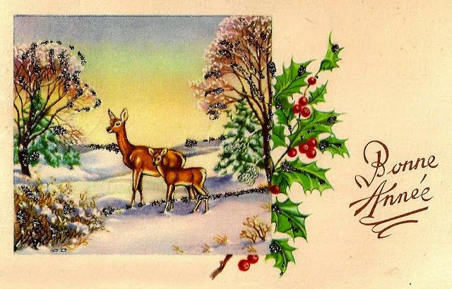 french text and images merry christmas and happy new year 2016