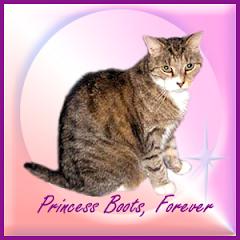 Princess Boots RIP
