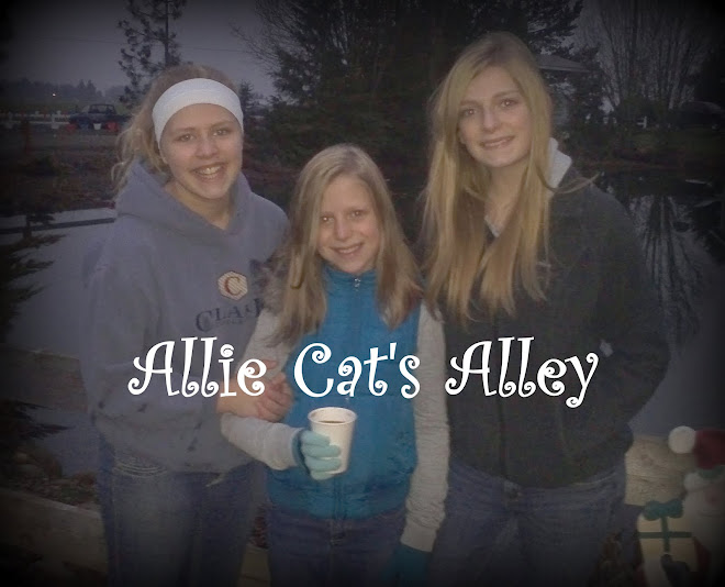 Allie Cat's Alley
