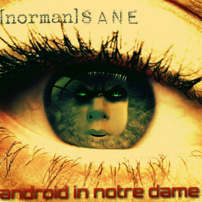Android In Notre Dame