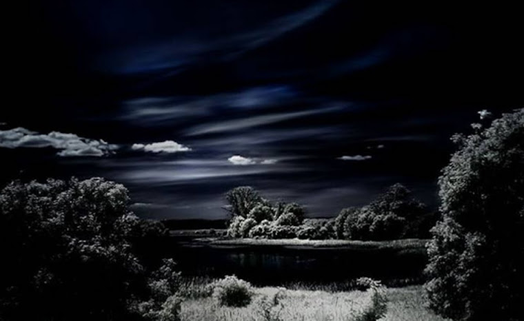 Noche profunda. Foto tomada de internet.