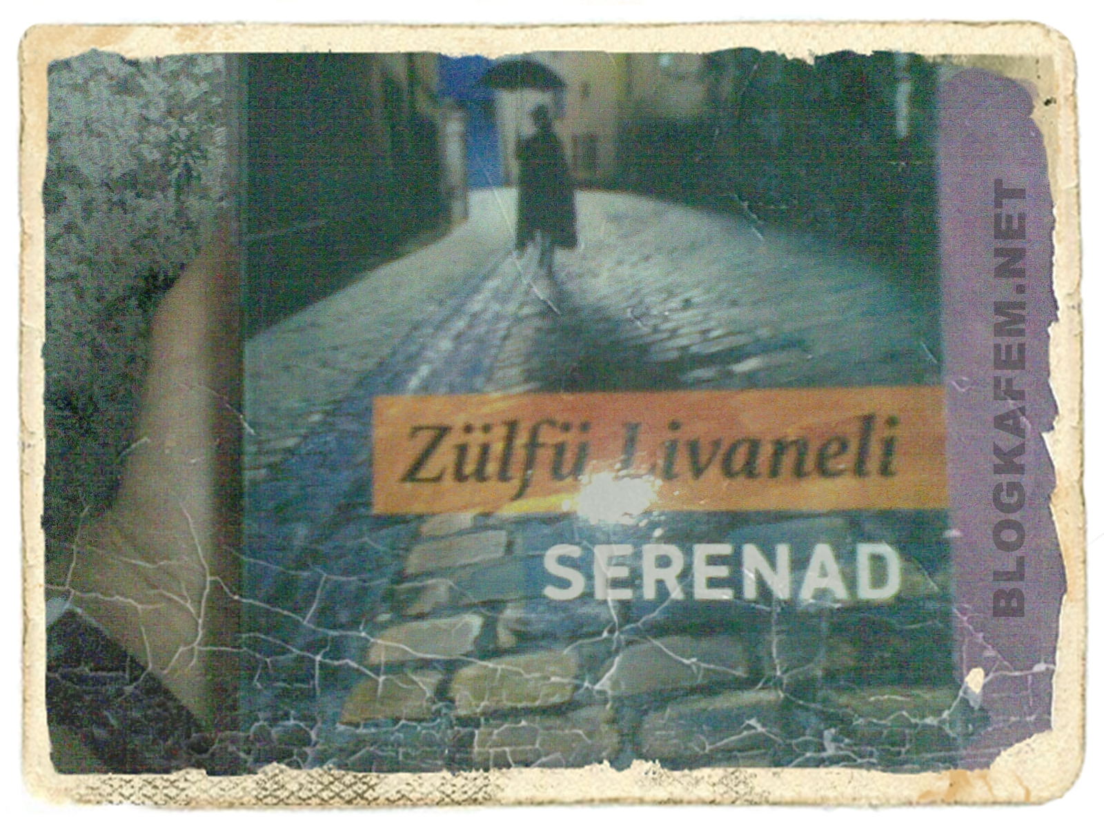 Okuduklarım : Zülfü Livaneli - Serenad « BLOGKAFEM.NET - Her