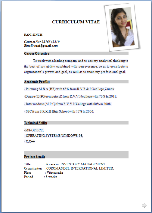 picture of a sample curriculum vitae