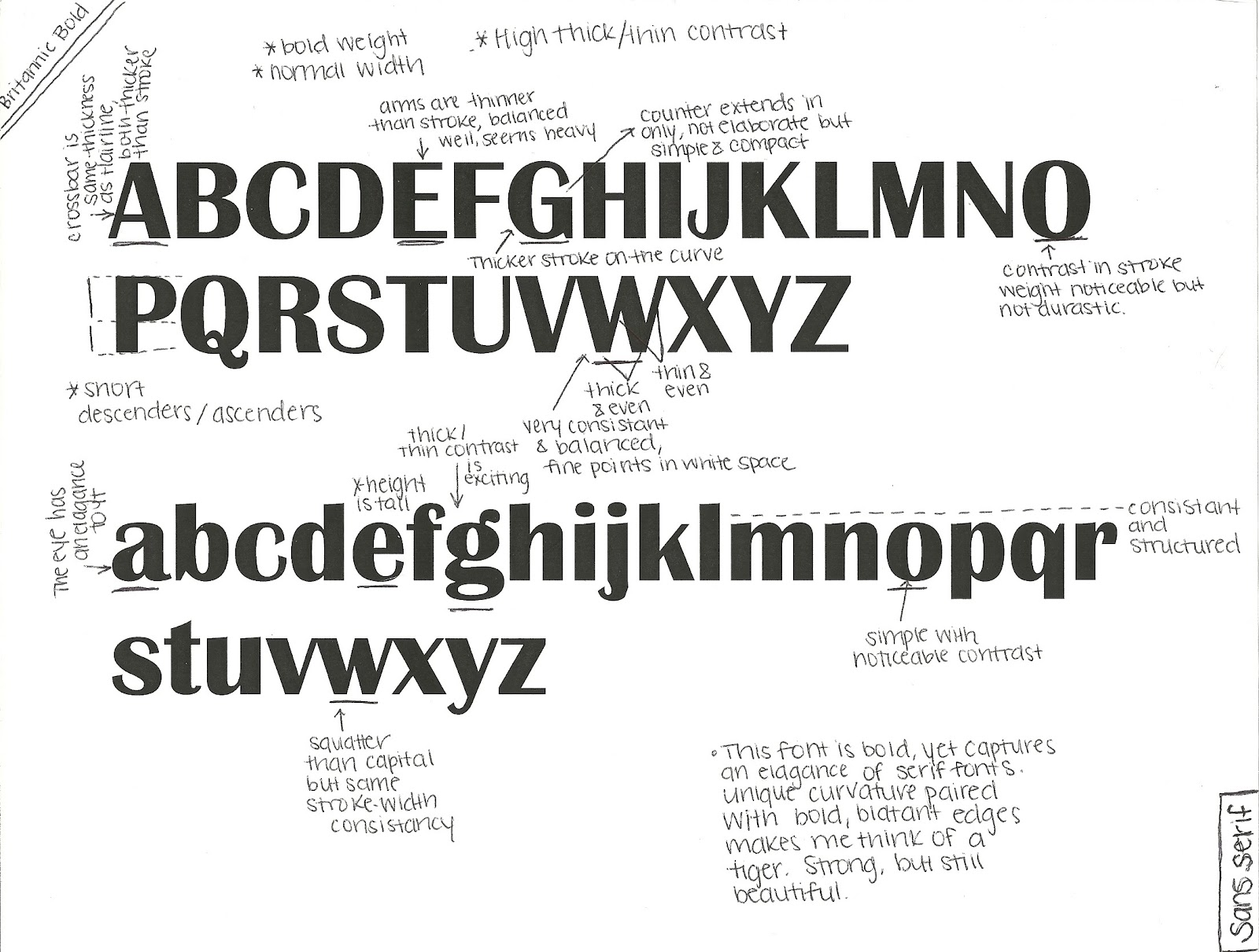gdtypography230 fall2012: Type Anatomy Project