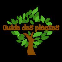 Guide des plantes de santé et bien-être