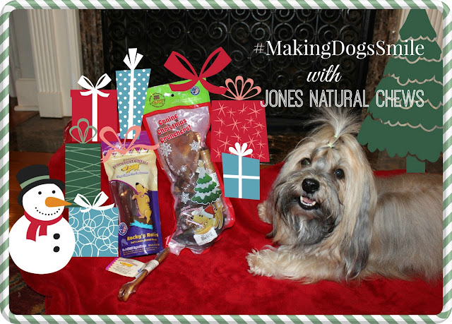 Jones Natural Chews  #MakingDogsSmile Rocco Havanese