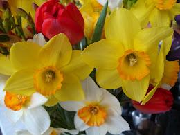 Любимите ми цветя