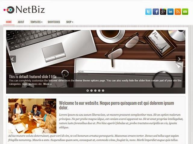 NetBiz - Free Wordpress Theme