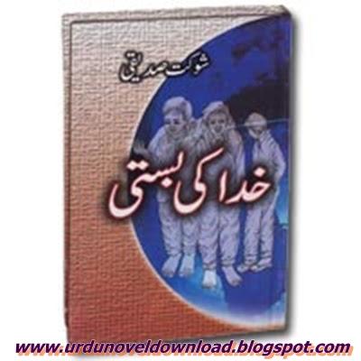 Khuda ki Basti Urdu Novel