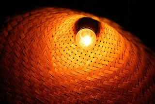 Memaksimalkan pertumbuhan ayam broiler dengan mengatur intensitas cahaya di dalam kandang