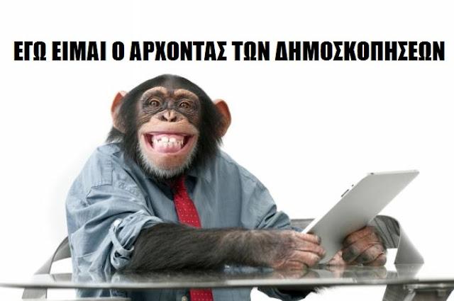 Χορέψτε μαϊμούδες! Αλλά και στο 0,0 να την δείξετε την Χρυσή Αυγή, ο κόσμος ξέρει και το βράδυ των αποτελεσμάτων θα σας κάνει να κρύβεστε!