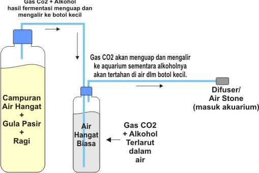 Membuat Tabung Dan Gas Murah Meriah Simple Aquascape