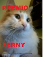24º PREMIO por Bielmun