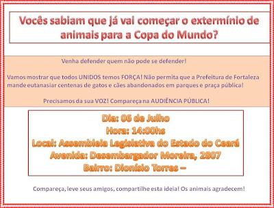 Banner informativo sobre audiência pública para discutir situação dos gatos do Parque do Cocó