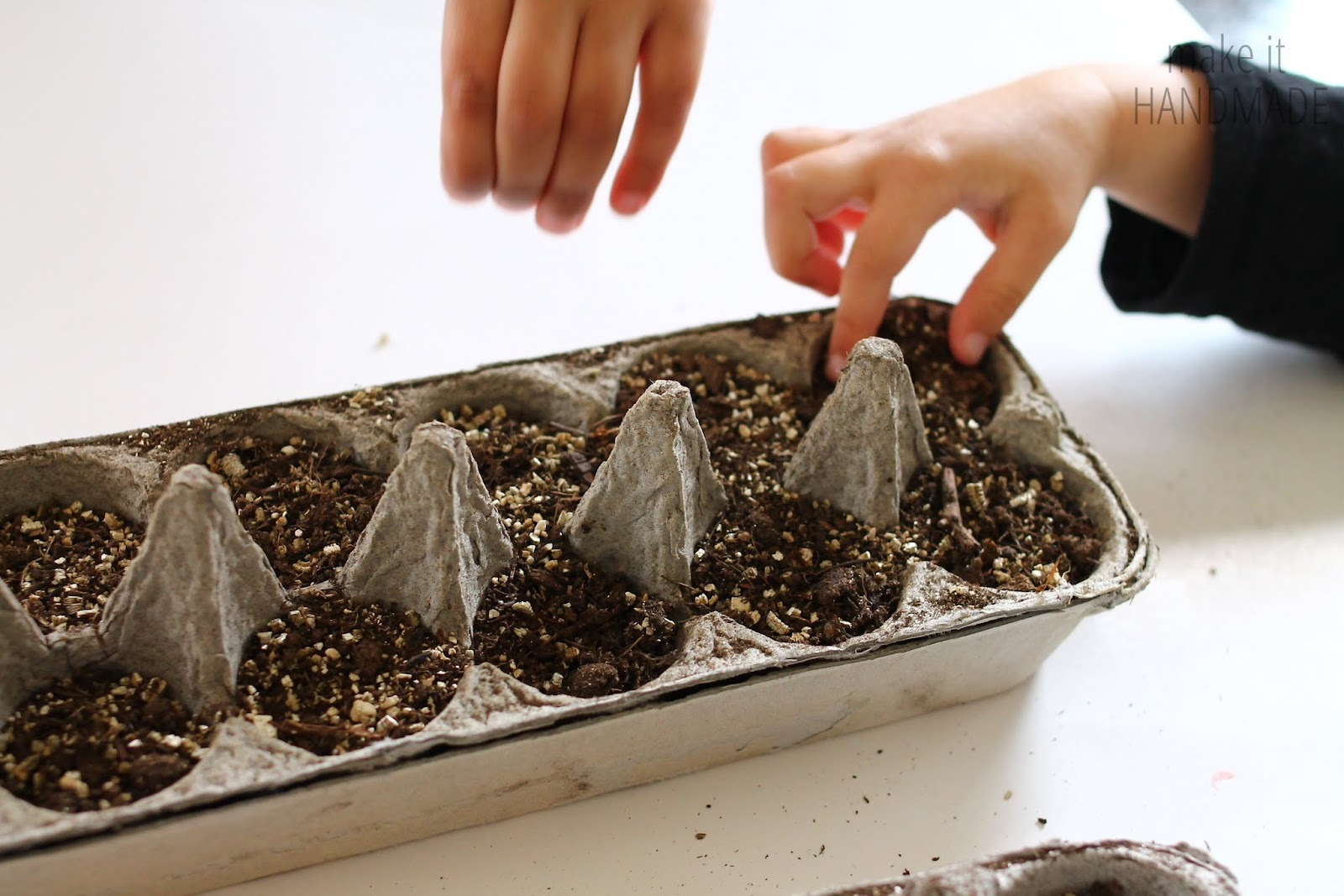 How to start vegetable seeds in egg cartons-- an easy step by step guide. A wonderful gardening project to do with kids of any age. from http://www.makeithandmade.com/2014/02/starting-seeds-in-egg-cartons.html