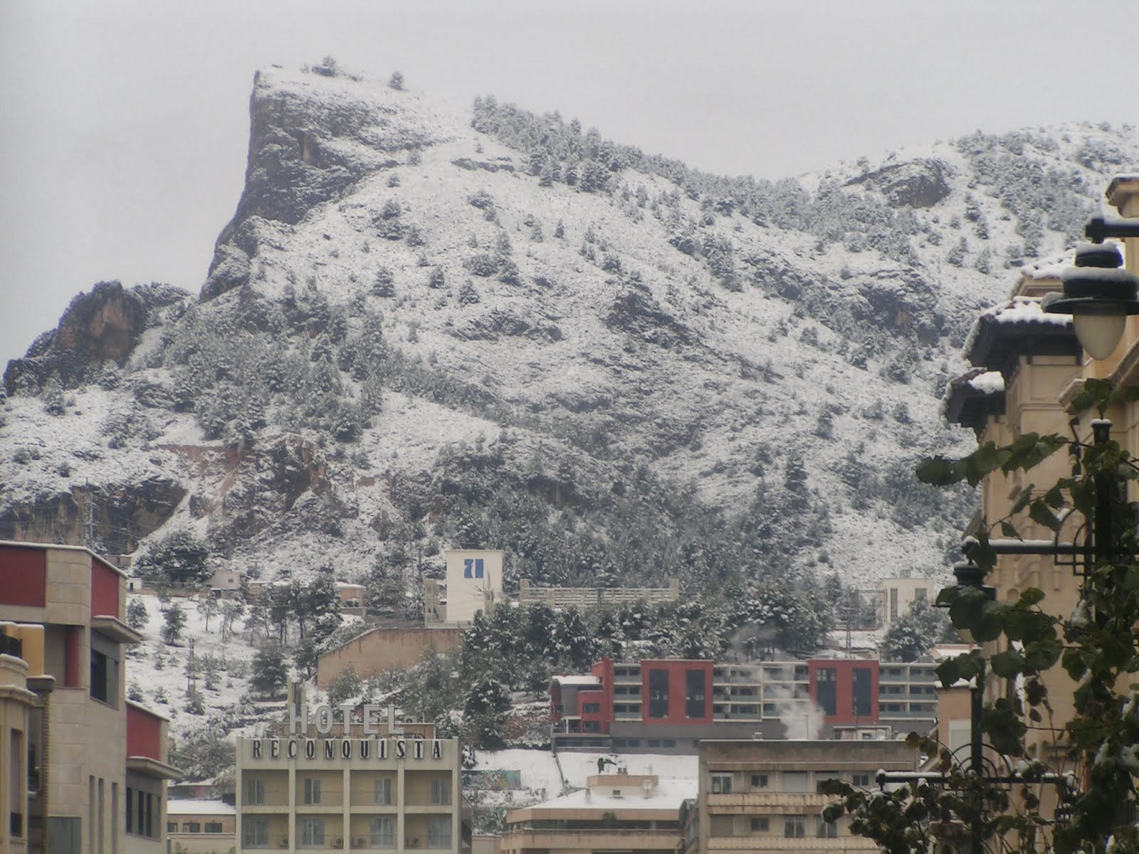 Alcoy nevado 1