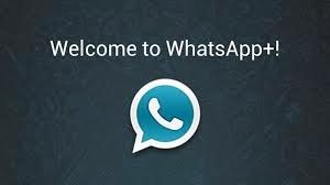 WhatsApp+ v4.95D [donation version] [patched, no root]