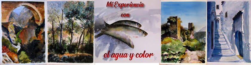 Mi Experiencia con el agua y color