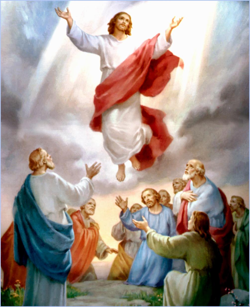 Para postear solo hechos concretos - Página 2 Ascension-de-jesus-sacerdote-eterno-blog