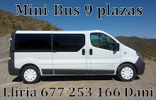 MINIBUS 9 PLAZAS