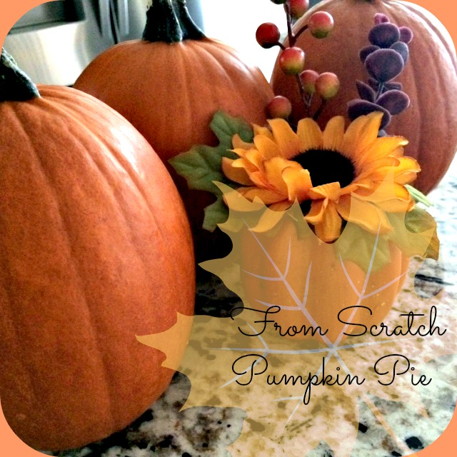 pumpkin_recipes