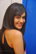 Adah Sharma Photos at Heart Attack Audio Success meet-thumbnail-19