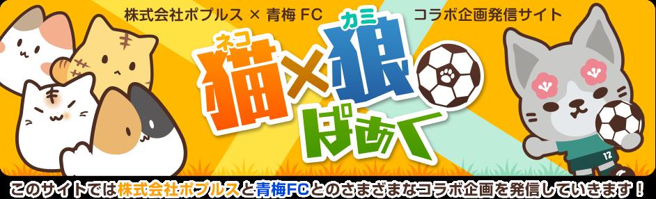 株式会社ポプルス×青梅FC 情報発信ブログ