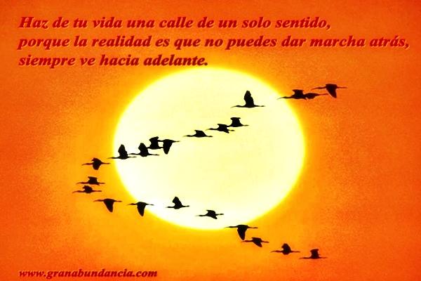 IMÁGENES BONITAS ® Fotos con Frases Bonitas Cortas