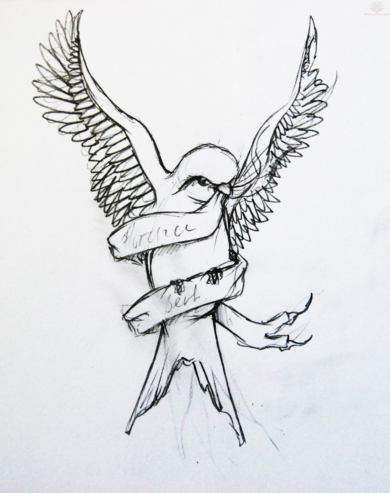New Line Art Design : Swallow bird tattoo designs