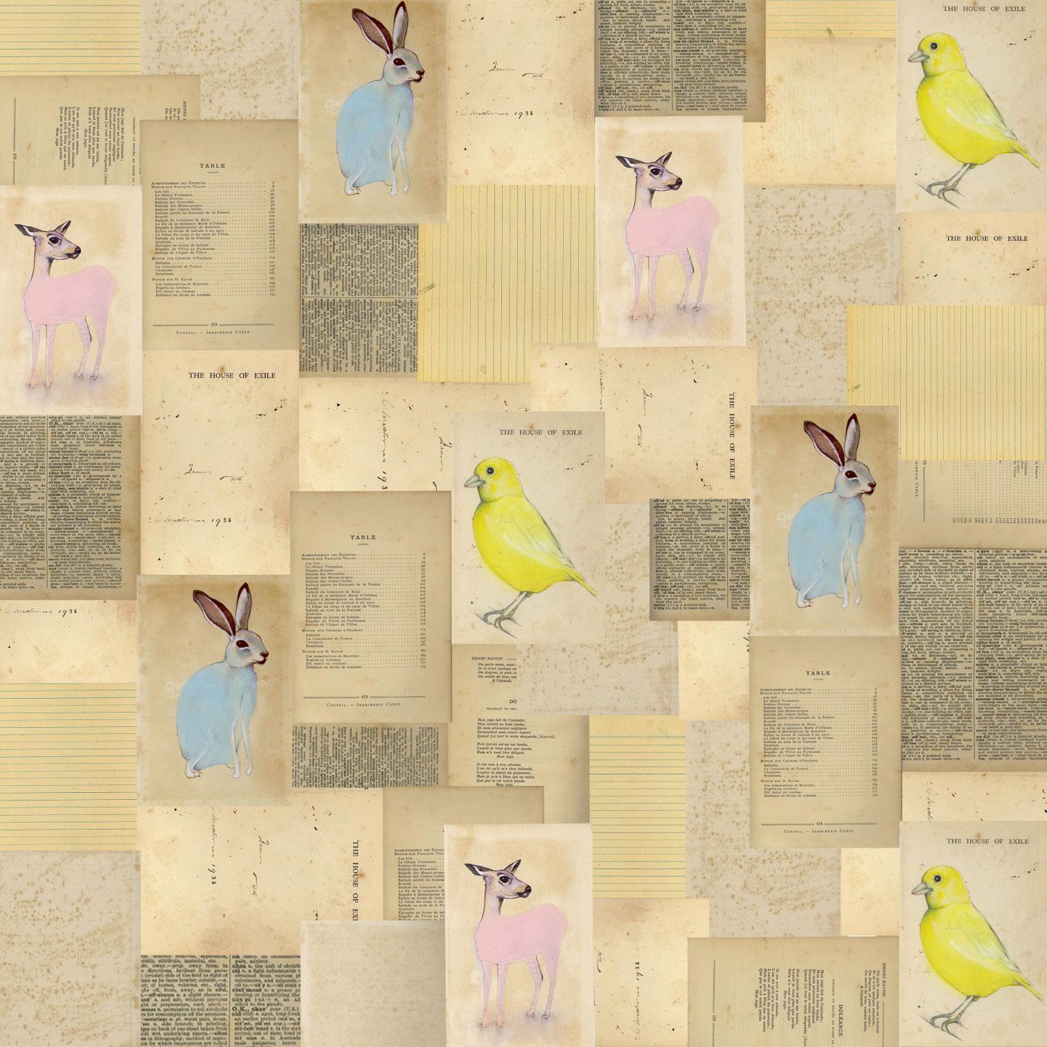 http://2.bp.blogspot.com/-wG7TSWdMdXk/Tozjdm6Kn2I/AAAAAAAAAYQ/p5rfxB8FIkE/s1600/animal-wallpaper.jpg