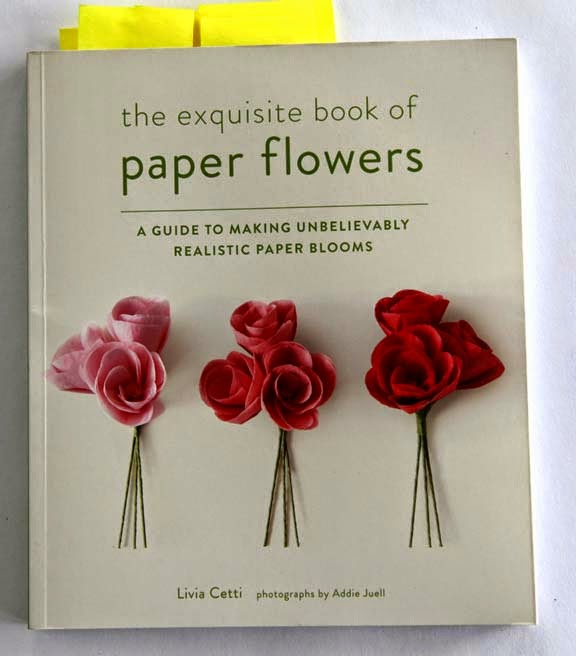 Getting stitched on the farm peonies yes the exquisite book of paper flowers are having their time in the sun right now and it is because of incredible artists such as livia cetti the author mightylinksfo