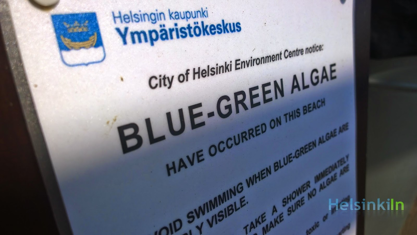 Blue-green algea in Helsinki