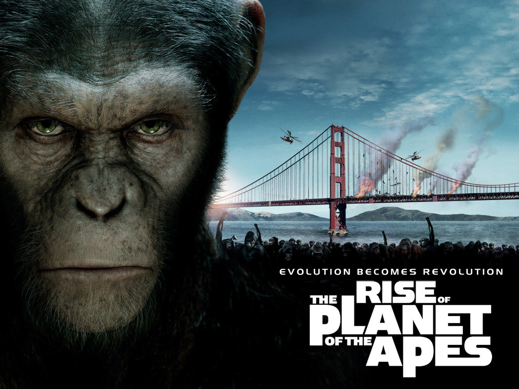 http://2.bp.blogspot.com/-wH404iVe440/TnRK3i-0KTI/AAAAAAAAAKE/2yXNp7VENOs/s1600/Rise_of_the_Planet_of_the_Apes%2528wallpaper_resolution_%2529Rise_of_the_Planet_of_the_apes_wallpaper_1.jpg