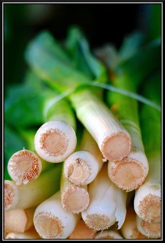 Recettes Légumes-Crème d'asperges