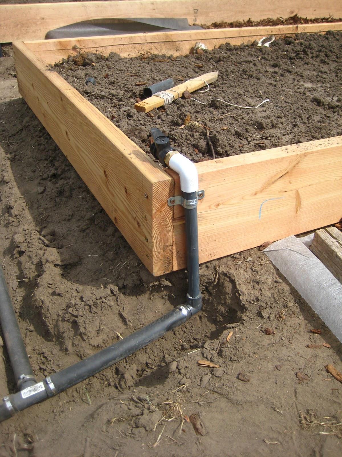 Susans In the Garden New drip irrigation system