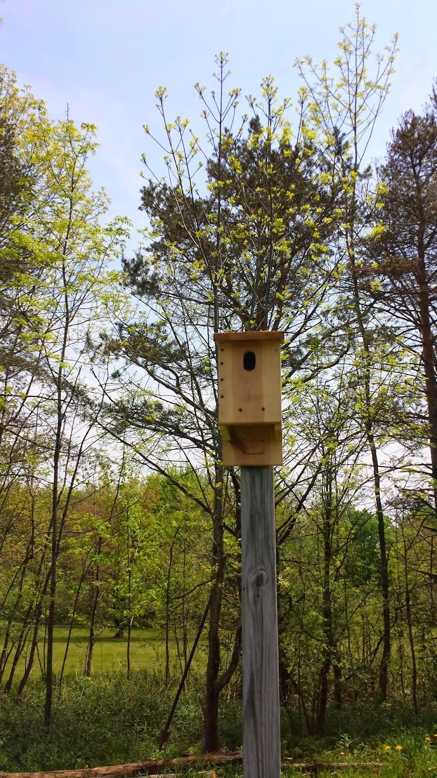 Eastern Bluebird House, shared by Halfway Oak Farm