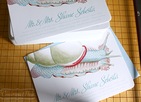 Sea Snail Wedding Invitation - Concertina Press