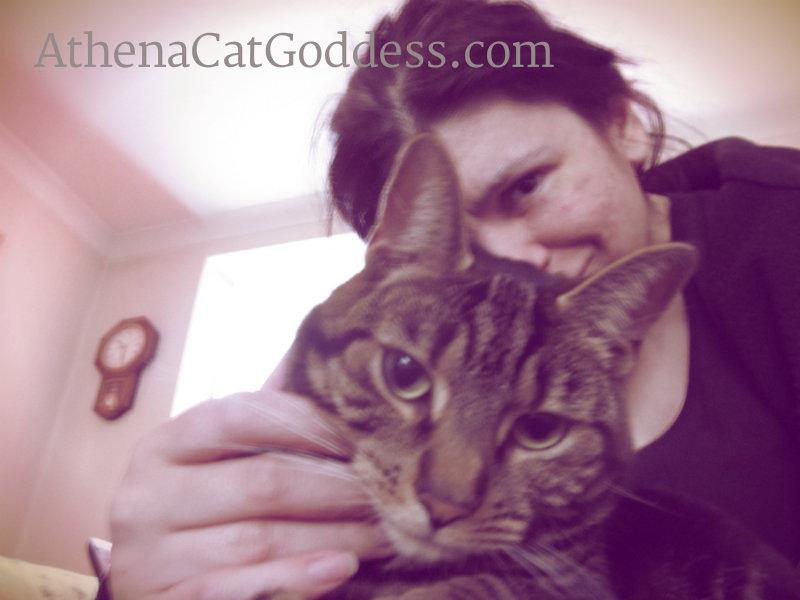 author and cat selfie
