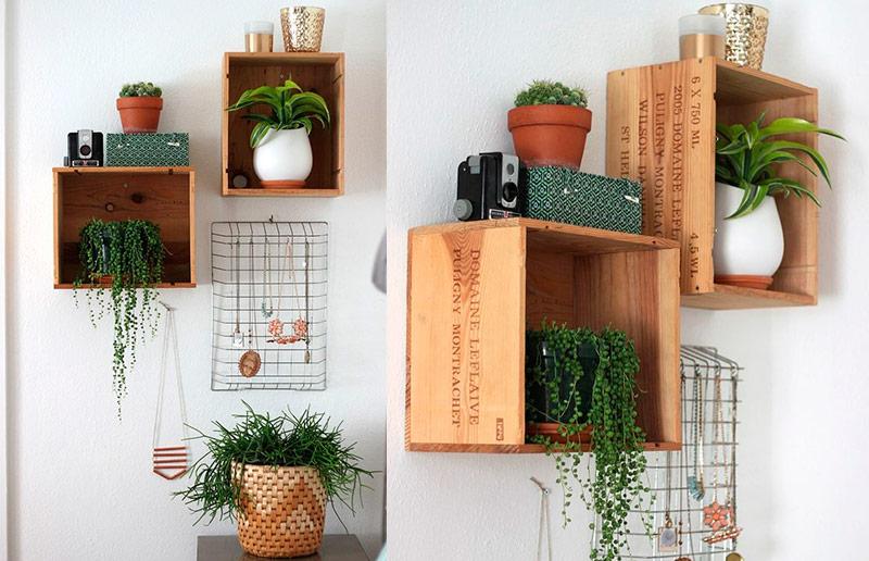 Maneiras de pendurar plantas: em estantes